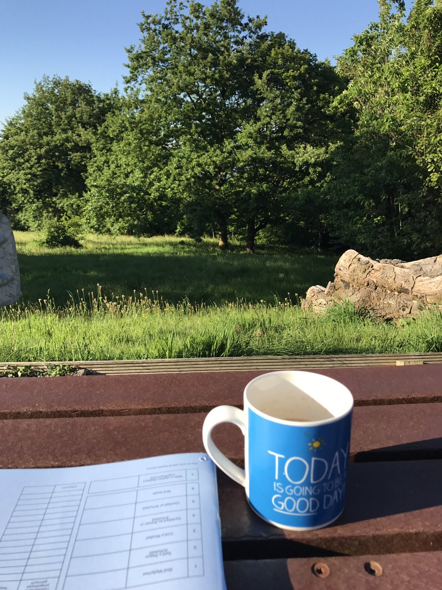 Grading scripts in the sun in a quiet part of the campus at 7.30am - I can cope with that #academia <br>http://pic.twitter.com/uiPpGdiDMS