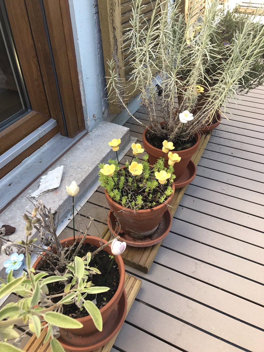 Perfekt #Gartendekoration Mit Porzellanblumen Pic.twitter.com/e6RmweoChi