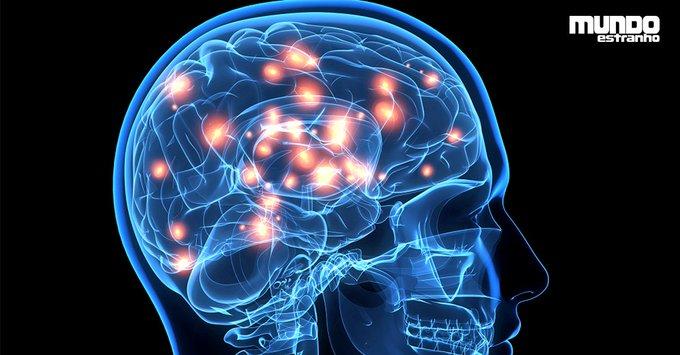 Quanta informação o cérebro pode armazenar? https://t.co/C8oGgcffAP