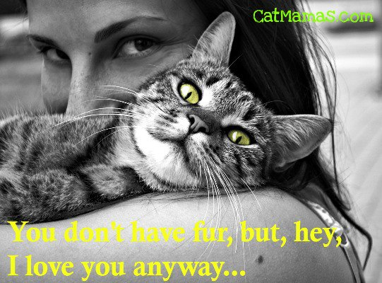 Doesn&#39;t it make you laugh when your #cat acts like she&#39;s doing you a favor by cuddling you? #furbaby #kitty <br>http://pic.twitter.com/s5VWQ98Fpy