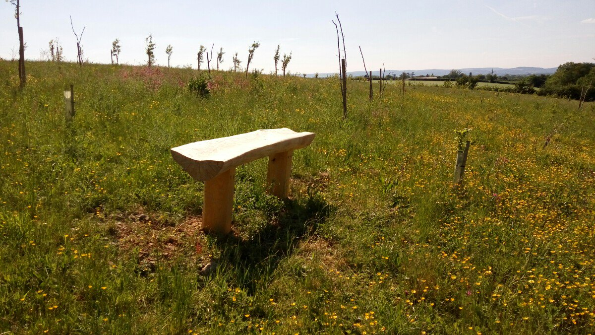 Some new benches as well in the @glouc_services Growing Space, made by our very own John. Wonderful views. #woodworking <br>http://pic.twitter.com/dae2q0nAuX