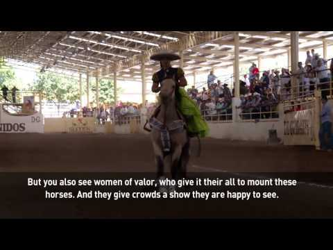 Urban Voice Melissa Torres masters the art and sport of horse ballet h...