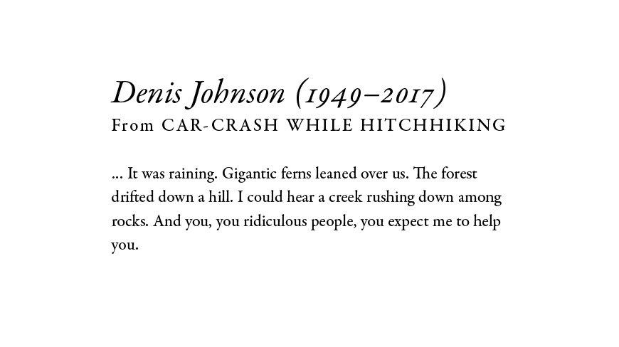car crash while hitchhiking