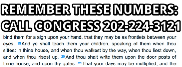 The Bible has some good advice about how to remember the number to call Congress, which is 202-224-3121. Listen to the Bible. 13/ https://t.co/VGuZ1ZR0G9