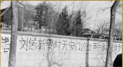 中国法治观察  害人终害己  文革打手自杀