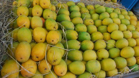 Aam Sutra: On the trail of the Indian Mango  https:// goo.gl/AqU9Wm  &nbsp;    #Mango #Travel #IncredibleIndia #fruit #mangoes<br>http://pic.twitter.com/itq8b5XWD7