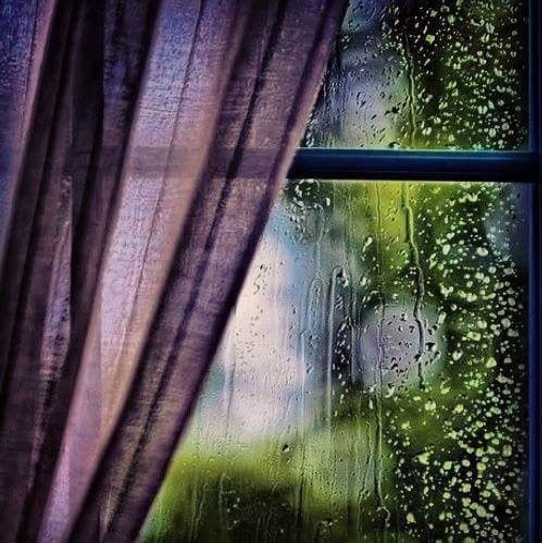 красивая живая картинка утро дождь за окном стиле
