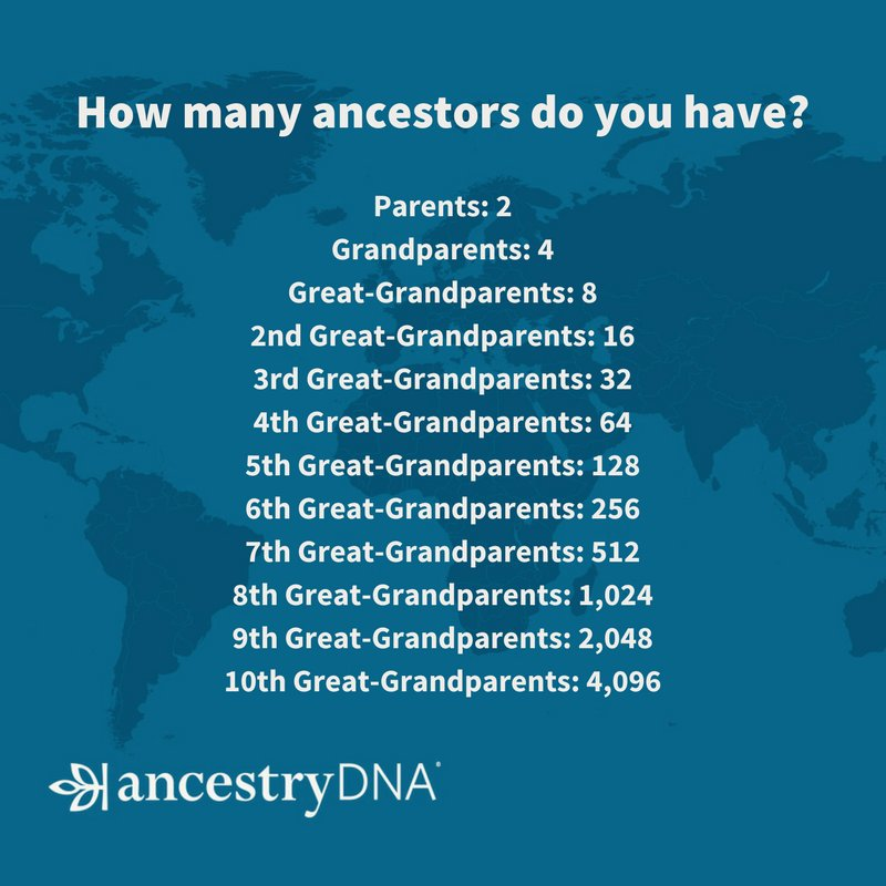 When you think your family tree is complete, keep this in mind! #Ancestry #AncestryDNA #FamilyHistory #Genealogy https://t.co/TFKzCTUuB4