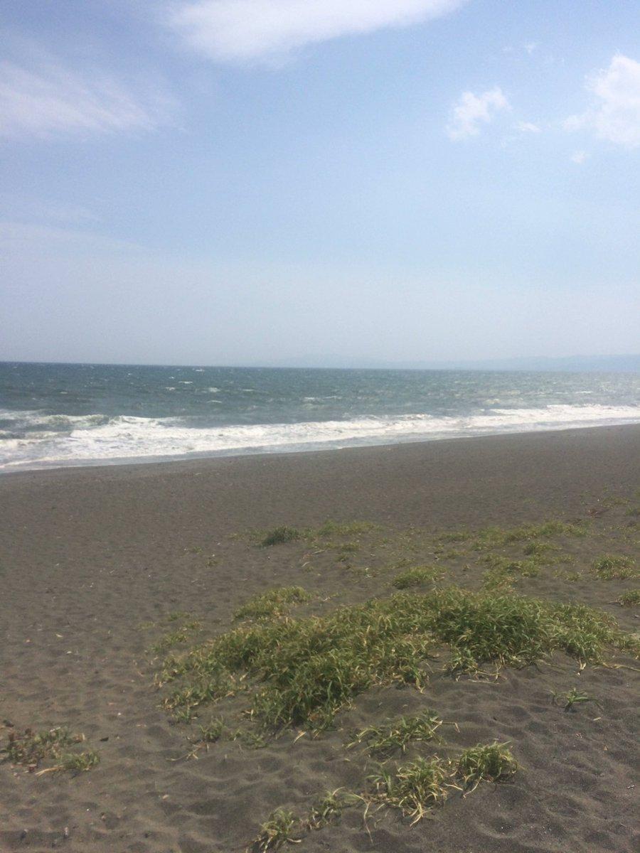 虹ヶ浜。風が強い #散歩部 https://t.co/CoAtDsOKFu