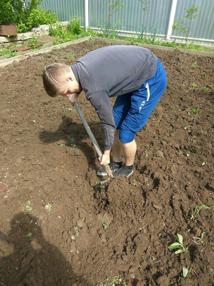 Копать огород картинка