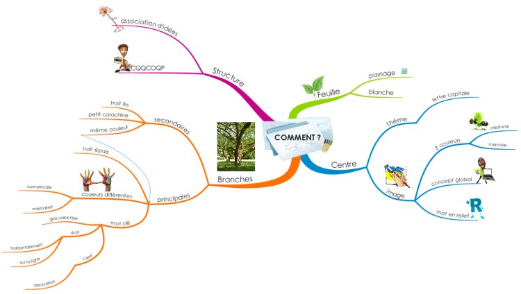 Comment faire une #MindMap ?  http:// ow.ly/40Ox30cqdIu  &nbsp;    #cartographie #MindMapping<br>http://pic.twitter.com/eHt4mIVzgy