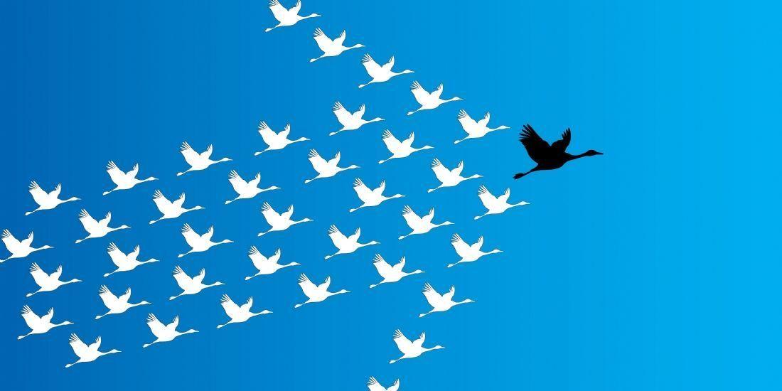 Comment travailler son leadership  http:// buff.ly/2rUPzU2  &nbsp;   #Leadership #entrepreneuriat #réussite #succès<br>http://pic.twitter.com/EhTwYWMNuW