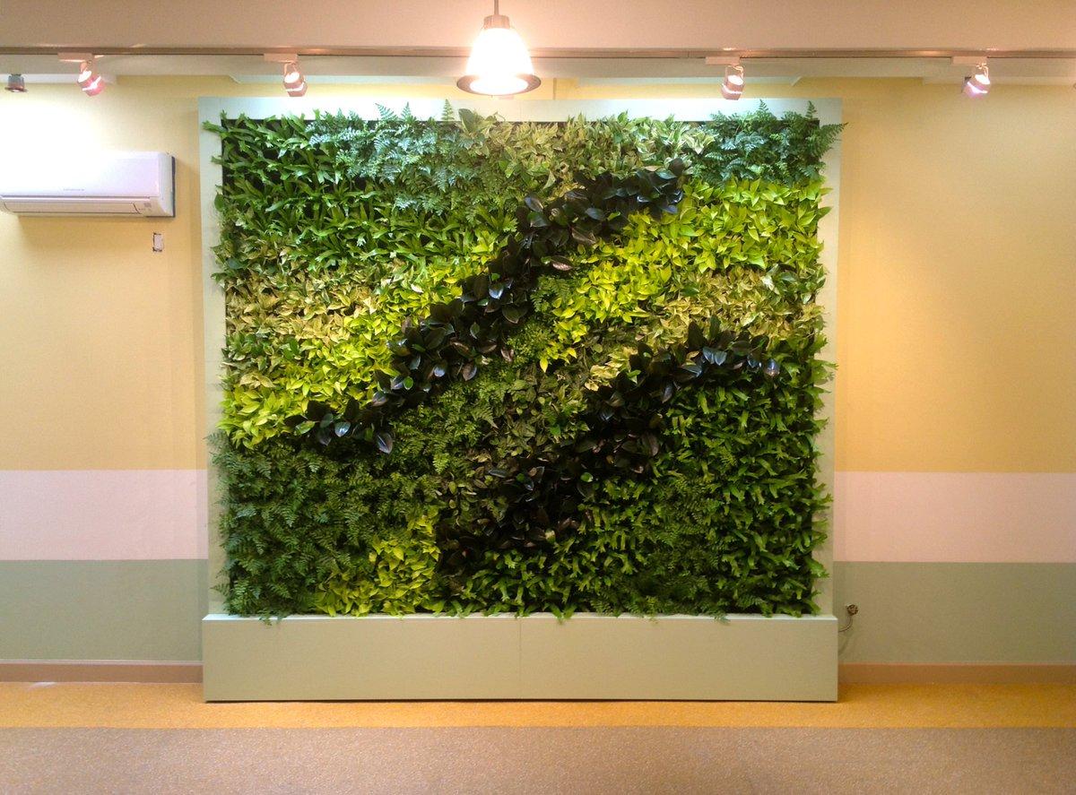 Creation Mur Vegetal Exterieur mur végétal maroc (@murvegetal) | twitter