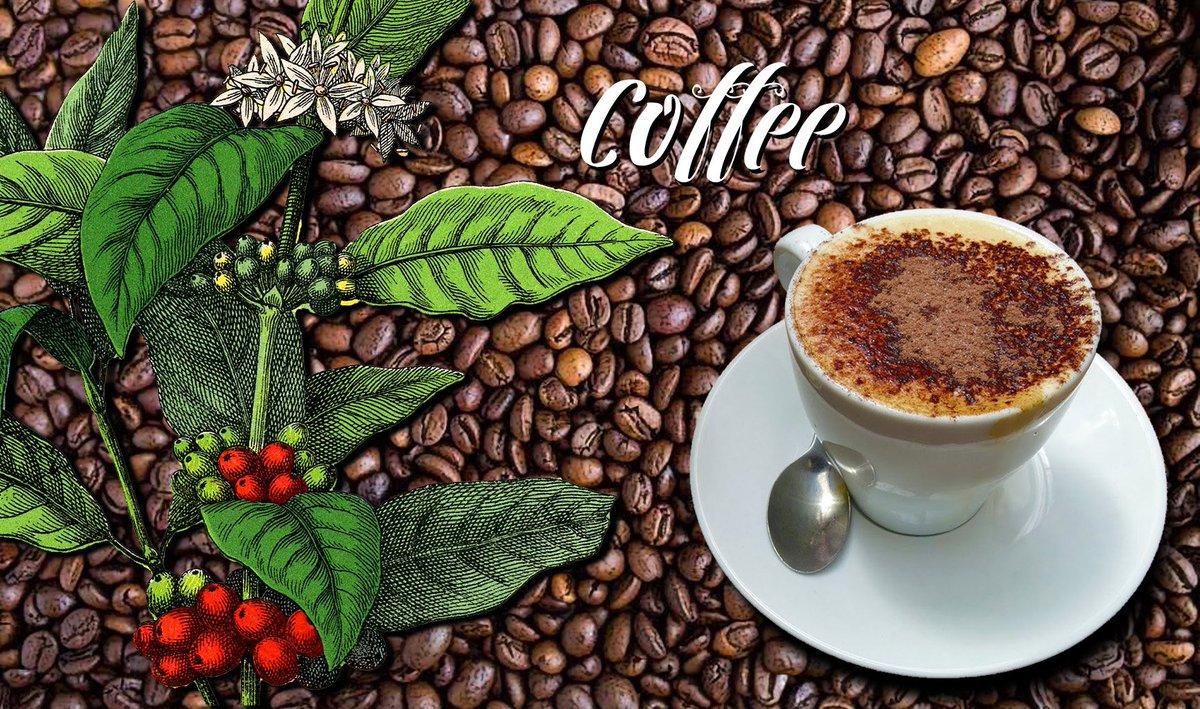 Help yourself to a virtual #cappuccino! #wallpaper #desktop #coffee #cafe  http:// mydesktopdaily.blogspot.com.au/2017/05/deskto p-1399-coffee.html &nbsp; … <br>http://pic.twitter.com/3FKJOC3X2t