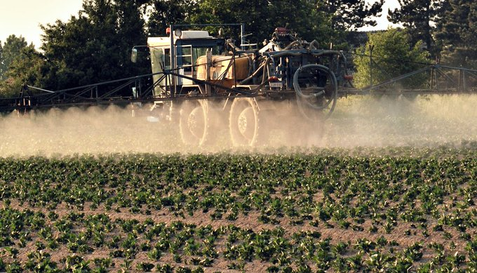 La France continue d'exporter un pesticide pourtant interdit en Europe https://t.co/5JpSuoakKj