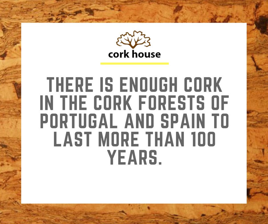 Cork is one of the only natural resources we have that has the potential to outlive us. #TheCorkHouse #Cork #EcoFriendly #GoGreen #Reusable<br>http://pic.twitter.com/xRrjS4y9mP