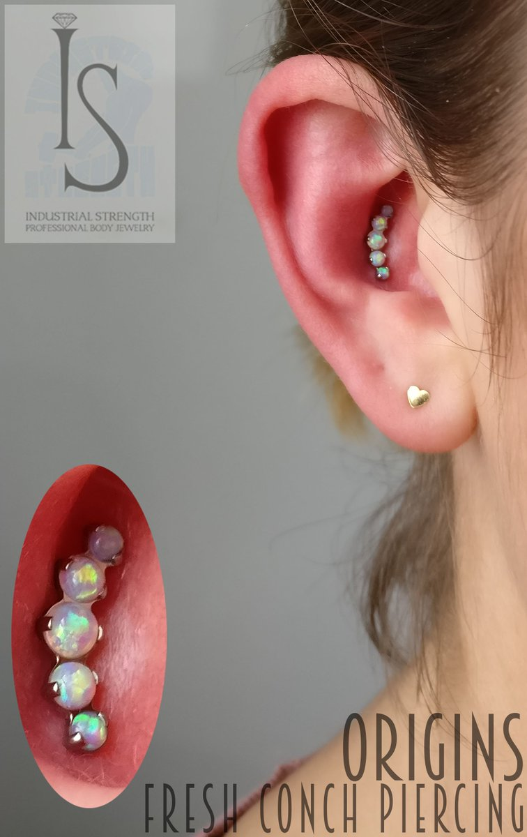 Only the best for our clients! #originarts #loughborough #piercing #profesionalpiercer #piercer #industrialstrength #conch #conchpiercing<br>http://pic.twitter.com/F5gja3boYP
