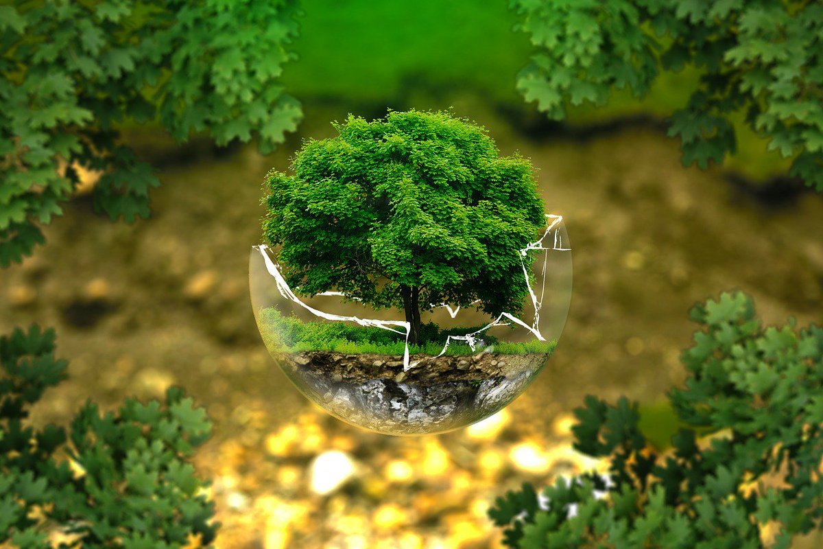 Take this quick #quiz to see if you are as #environmentallyfriendly as you think you are...  https://www. theguardian.com/lifeandstyle/2 017/may/14/are-you-as-environmentally-friendly-as-you-think-personality-quiz &nbsp; … <br>http://pic.twitter.com/y8NmFksnsH