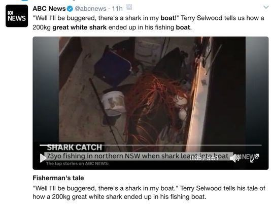 Australian fisherman 'stunned' after great white shark launches itself into boat https://t.co/Ux1uc3phkr