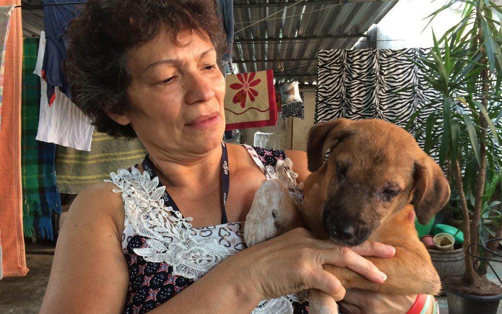 Protetora resgata cães e gatos abandonados na Cracolândia https://t.co/4CWRDuz0Nz
