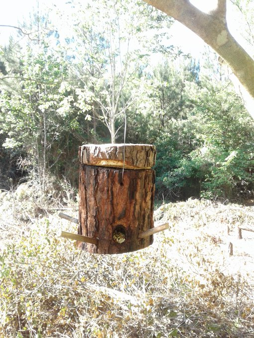 How to make a Log Bird Feeder| DIY Low Cost