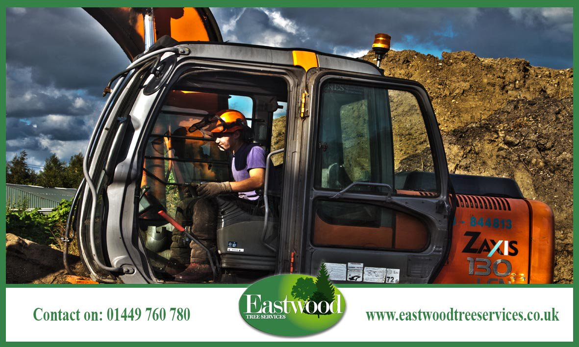 The #Eastwood Tree Services team is always happy to help &gt;&gt;&gt;  http:// bit.ly/EastwoodTreeSe rvicesManagement &nbsp; …  #TreeSurgery<br>http://pic.twitter.com/uXgu3p8u1Q