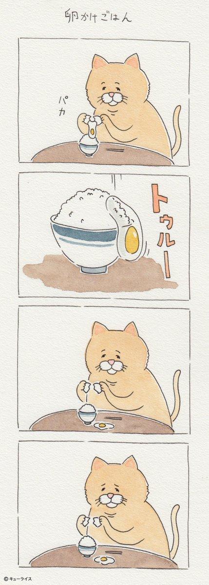 予想を裏切らない。 4コマ漫画「卵かけごはん」