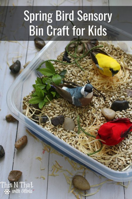 Spring Bird Sensory Bin Craft for Kids