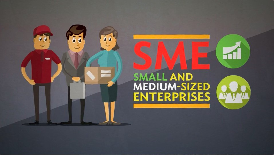 crediting of small and medium sized How does the government program of support for small and medium enterprises work in the conditions of the global financial crisis according to the authors, there are flaws in its application, the essence of which is that banks use public funds to maximize their own profits.
