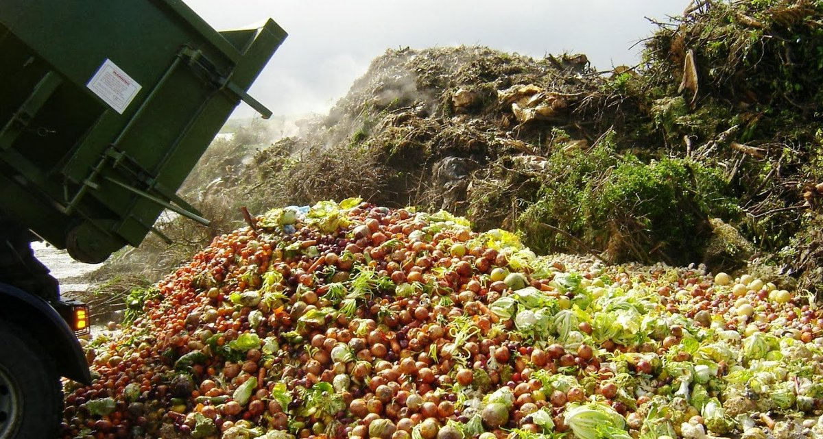 #FoodWaste is the world's dumbest environmental problem  http:// bit.ly/2pipfTX  &nbsp;   #FoodInnovation #Sustainability <br>http://pic.twitter.com/79XPa9Zb1D