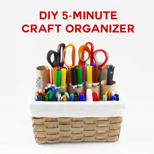 DIY Craft Organizer in 5 Minutes!