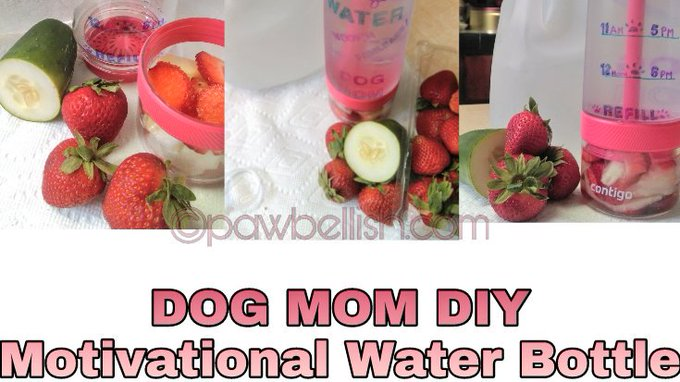 Dog Mom DIY Motivational Water Bottle