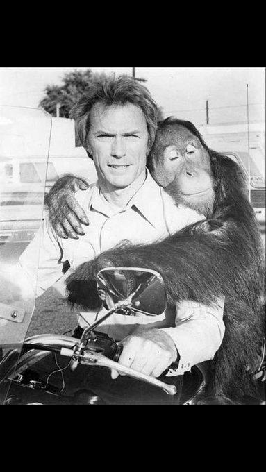 Happy 87 birthday to the brilliant filmmaker and true renaissance man, Clint Eastwood!  LEGEND
