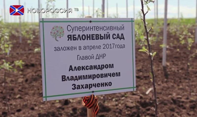 Боевики отказываются идти на передовую и массово расторгают контракты, - ГУР - Цензор.НЕТ 220