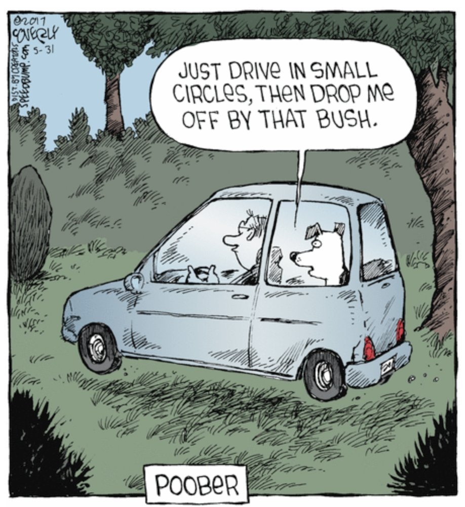 uber for dogs