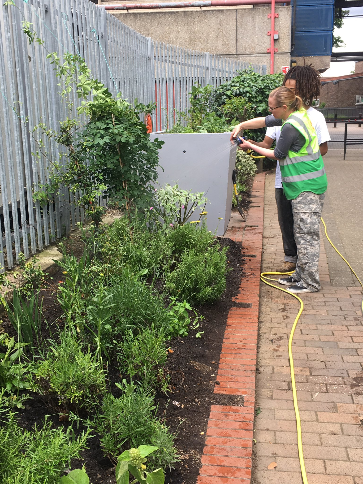 Great fun this afternoon with @EdibleBusStop, planting berries, herbs and flowers at Brixton's 'Barrier Block'. @ChelseaFringe @csmMANE https://t.co/d0NLbFUC6Q