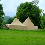 Glamping in the Cotswolds? No we hit Sherborne Estate at the same time as Spring Watch.