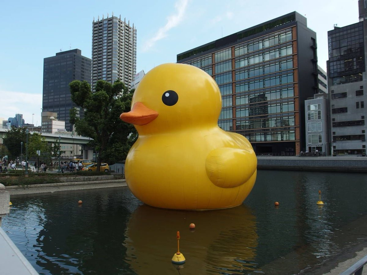 World&#39;s biggest #rubberduck coming to #Toronto, said to have social media &amp; selfie appeal.   http://www. blogto.com/arts/2017/03/w orlds-biggest-rubber-duck-coming-toronto/ &nbsp; …  #hyperventilation <br>http://pic.twitter.com/tAxgOgAz1Z