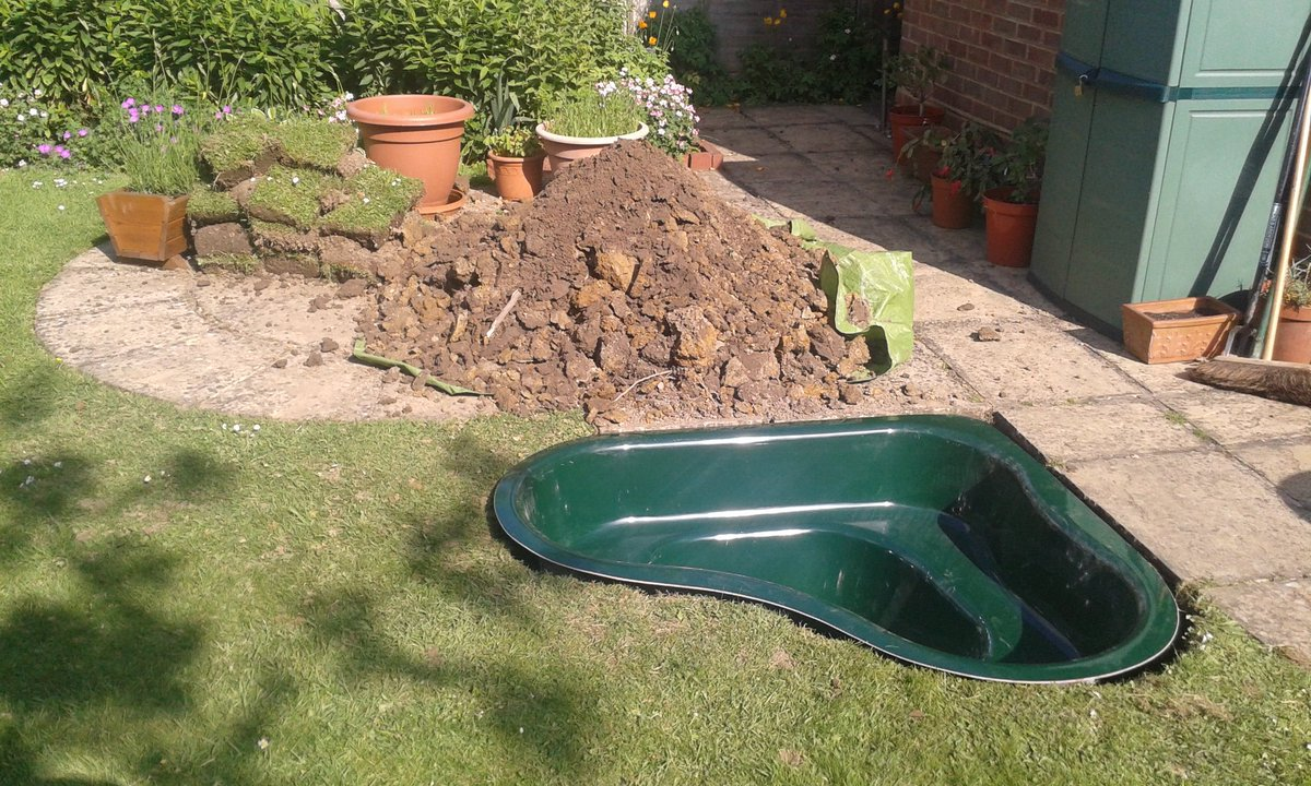 My #30DaysWild have begun with a garden pond @SussexWildlife https://t.co/W4oEl3C361