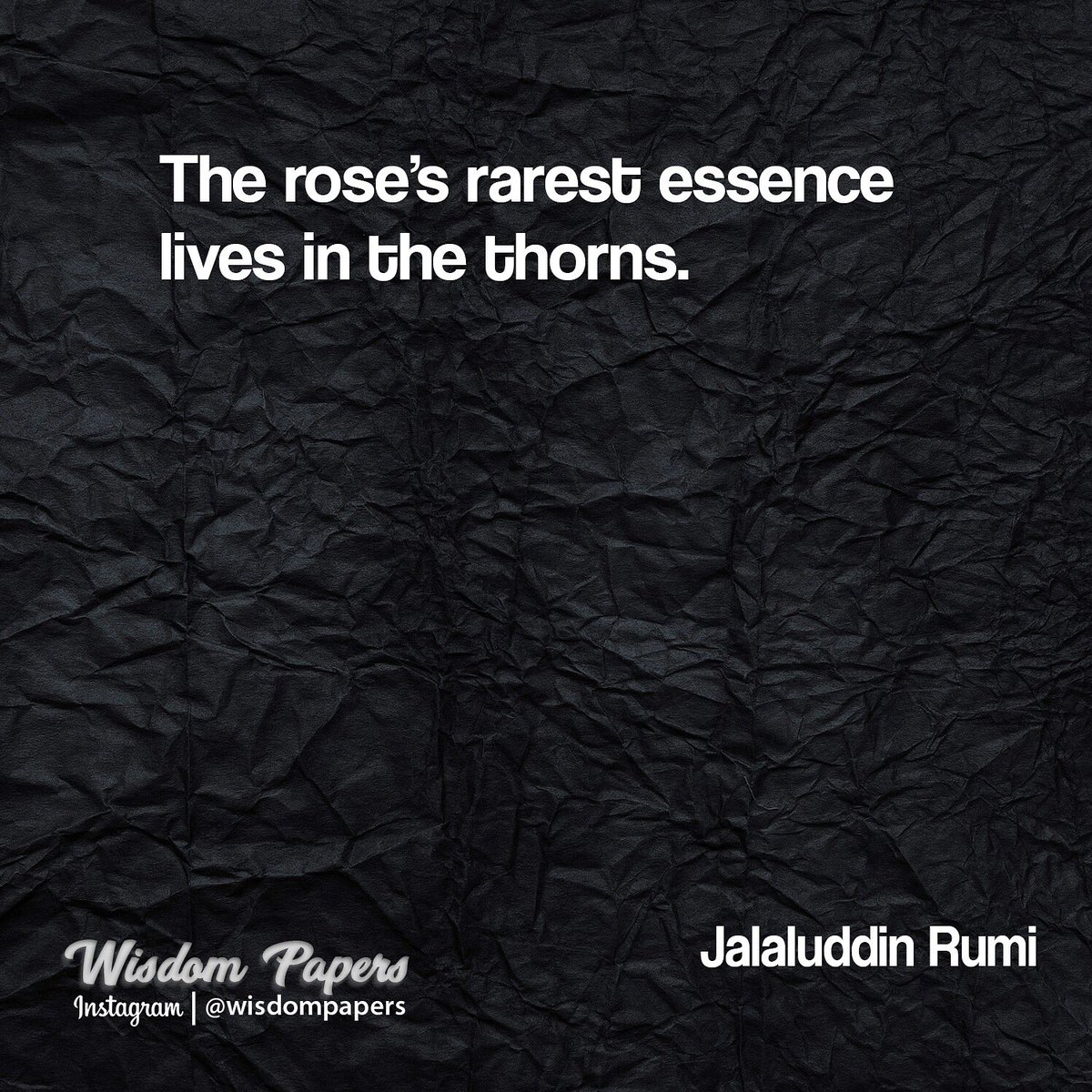 Wisdom Papers On Twitter The Roses Rarest Essence Lives In The