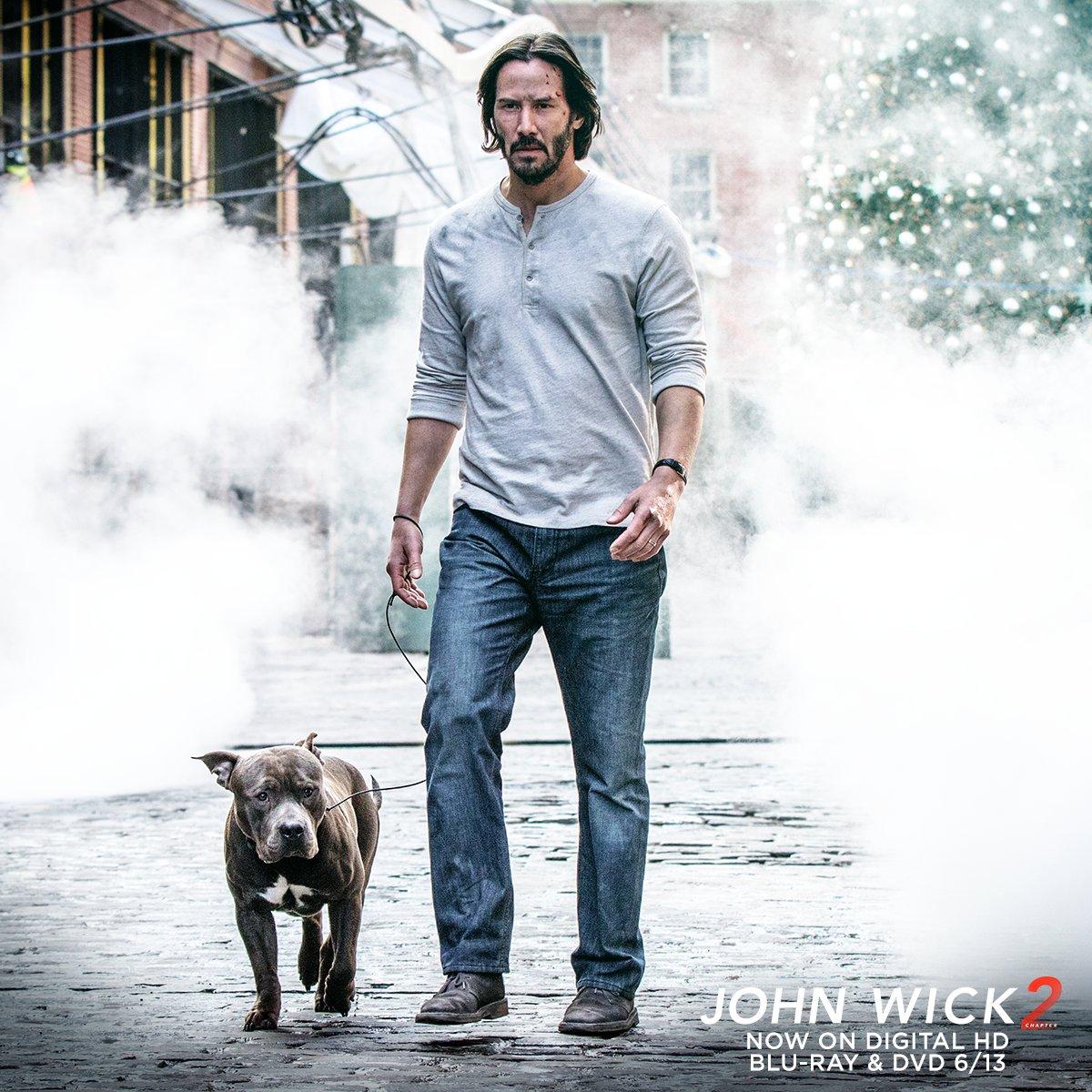 John Wick  Dog Name