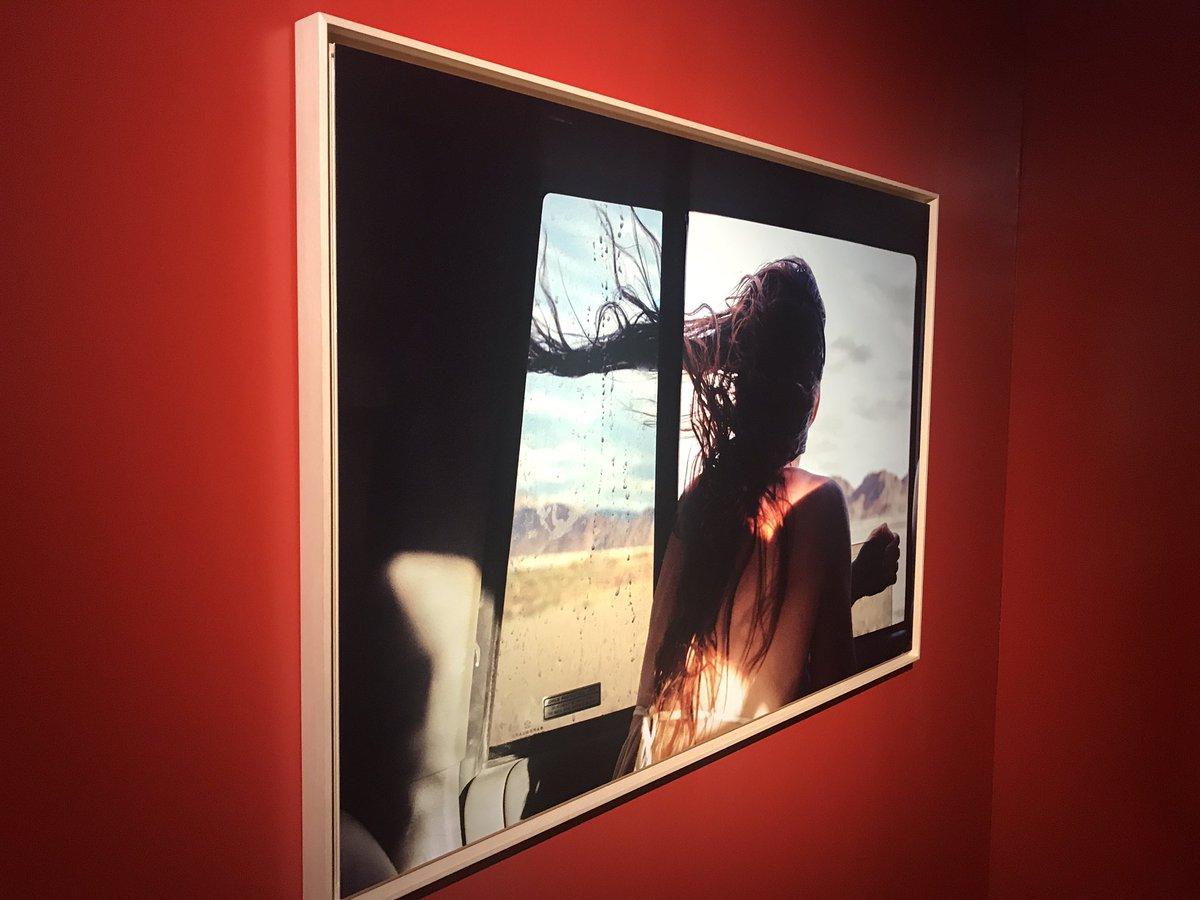 Magnifique exposition au @museedupuy pour le festival @MAPtoulouse #photographie #Toulouse #Map