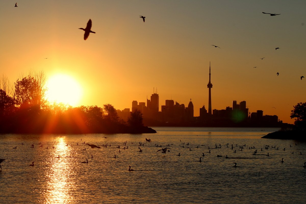 It's a beautiful sunrise this morning in Toronto. Not a bad way to start the weekend. Have a great one everybody. https://t.co/fze2rQ9zCJ
