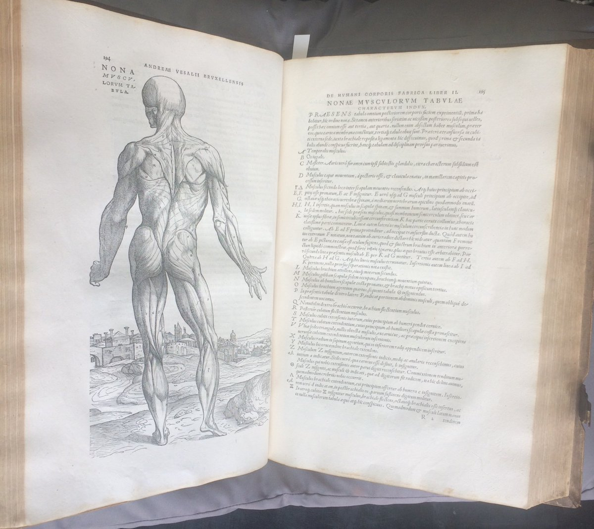 V A On Twitter A Rare 1st Edition Of Vesalius S Groundbreaking
