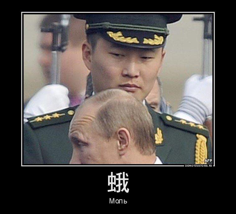 Позиция Евросоюза и Китая по Украине совпадает, - Туск - Цензор.НЕТ 1888
