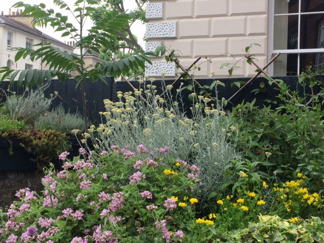 Looking forward to our 'gardening with nature' Permablitz @cecilsharphouse Sat 3rd part of @ChelseaFringe https://t.co/efAU1d0eT6