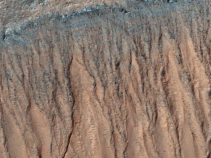 Зонд Mars Orbiter обосновал существование жизни наМарсе