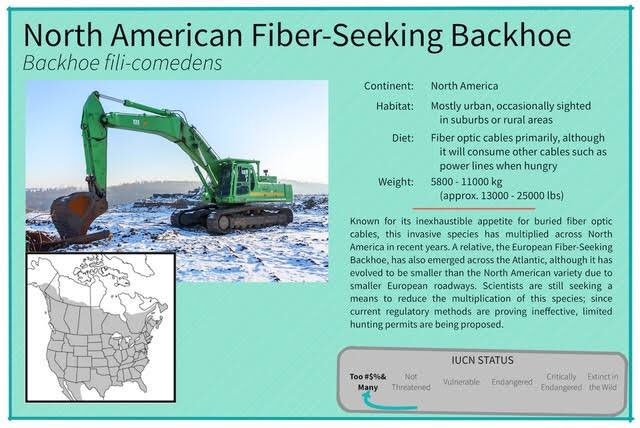 @KDbyProxy @SwiftOnSecurity Ah, yes. The North American Fiber Seeking Backhoe https://t.co/IS7oG5Plr8