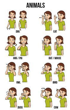 Exceptional image with regard to asl animal signs printable
