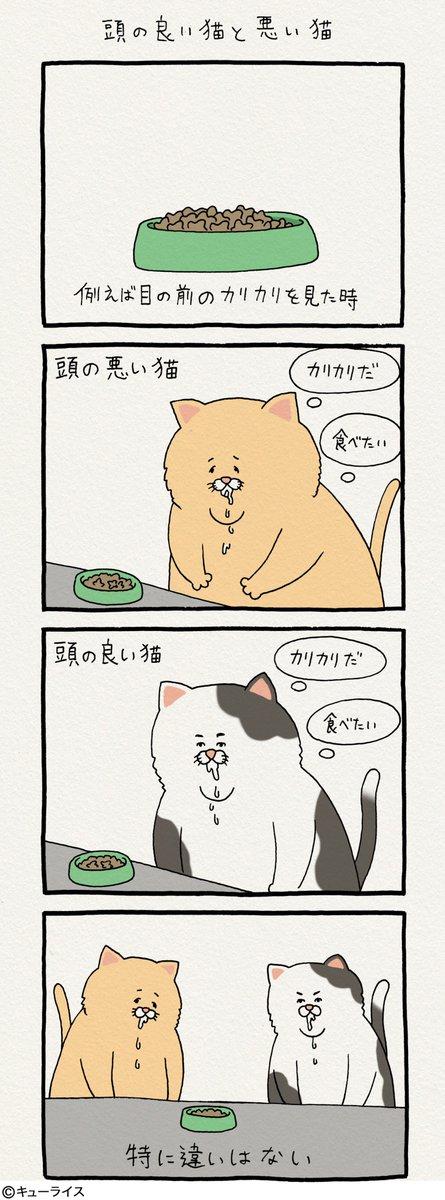 4コマ漫画ネコノヒー「頭の良い猫と悪い猫」